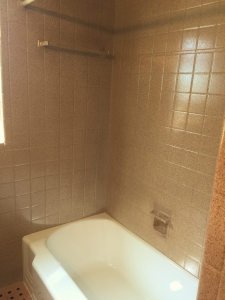 After: One of our neutral Fleck colors.